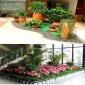 户外花卉,户外花卉菊花盆栽 户外花卉 观花植物盆景|武汉户外花卉租摆